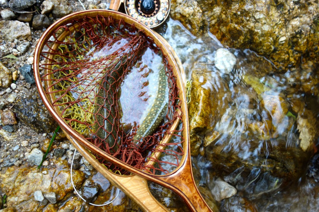 ランディングネット二本と岩魚二尾